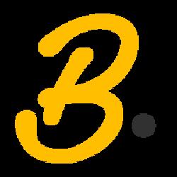 BinStarter BSR