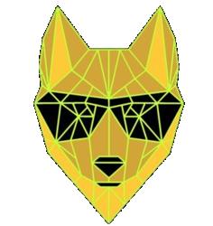 Dingo Token DINGO