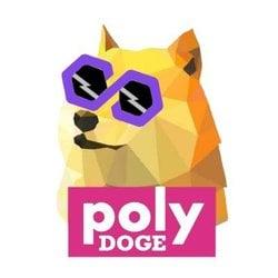 PolyDoge POLYDOGE