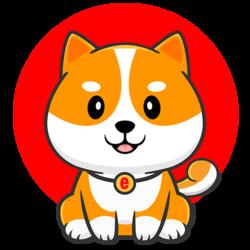 Shiba Floki FLOKI